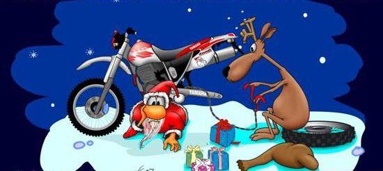 Frohe Weihnachten Besinnliche Feiertage.Ecc Schönau Frohe Weihnachten Besinnliche Feiertage Und Einen
